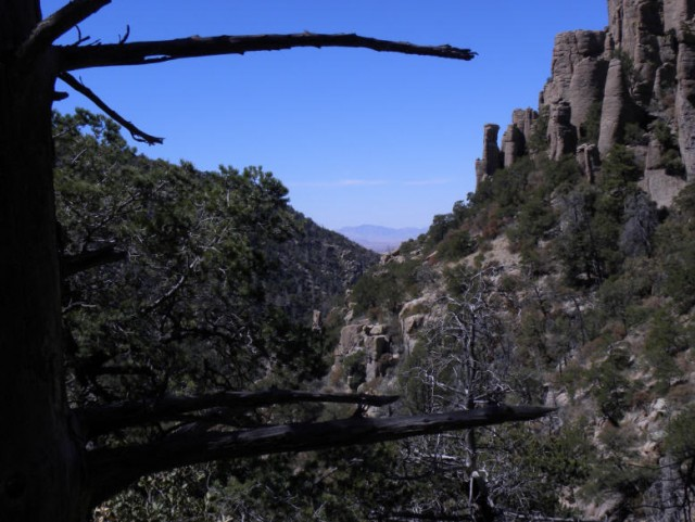 Garden Kaleidoscope At Olbrich >> My Wisconsin Space » Rhyolite Canyon from Hailstone Trail, Chiricahua National Monument ...