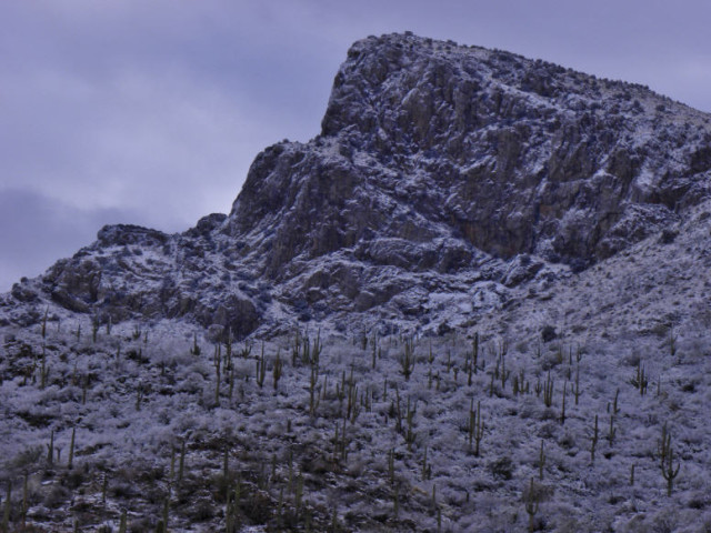 Pusch Ridge in Winter, Coronado National Forest - Tucson, Arizona