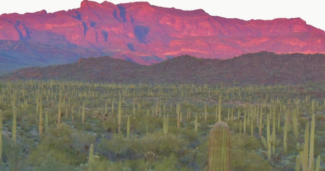 Ajo Range in Alpenglow, Organ Pipe Cactus National Monument - Ajo, Arizona