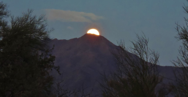 Setting Moon, Tucson Mountain Park - Tucson, Arizona