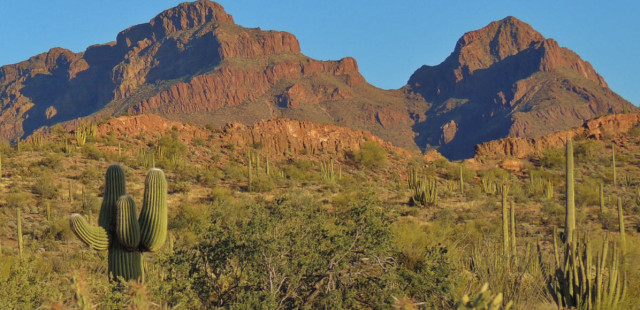 Mountains of the Ajo Range, Organ Pipe Cactus National Monument - Ajo, Arizona
